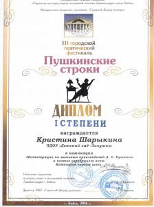 Кристина Шарыкина